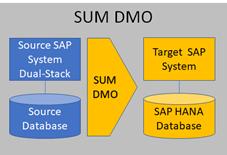 Migration base de données SAP HANA_SUM DMO