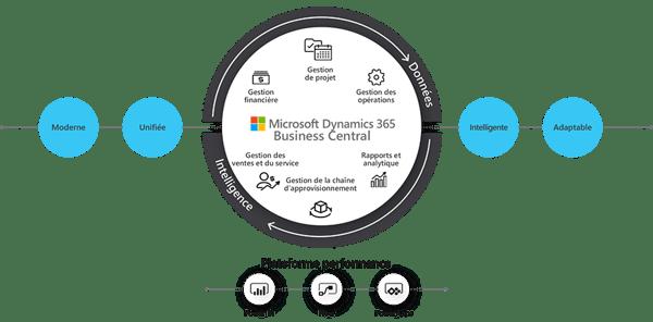 Ecosystème Microsoft
