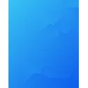 Icon_close, consolidate, report, disclose